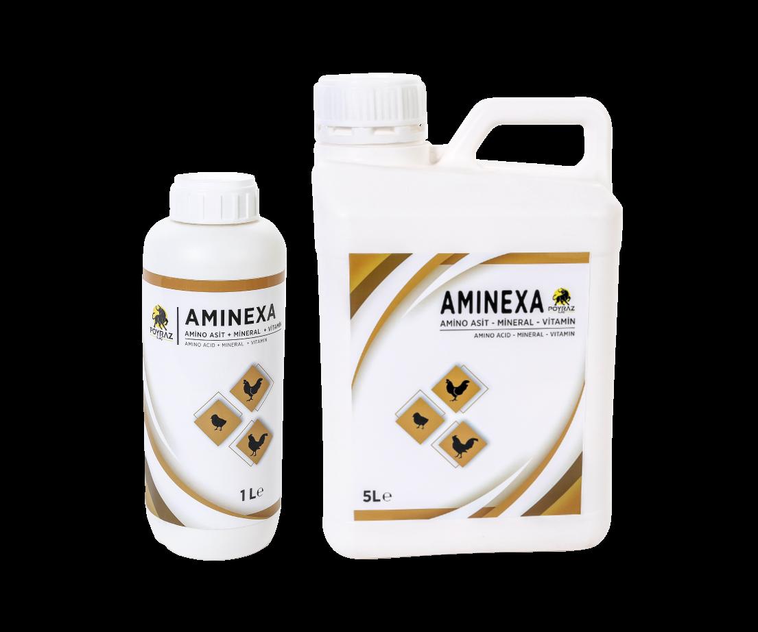 Aminexa