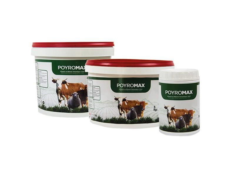 Poyromax